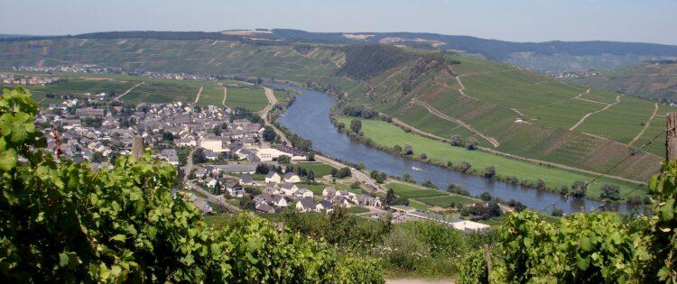 Uitzicht over de wijngaarden van de Moezel in Duitsland
